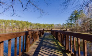 499_Forest_Lake_Road_file_150061p-19