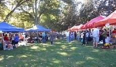 Fall Arts Fair